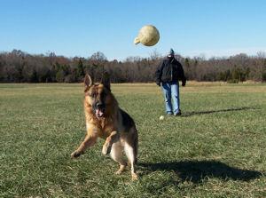 Carlos at play